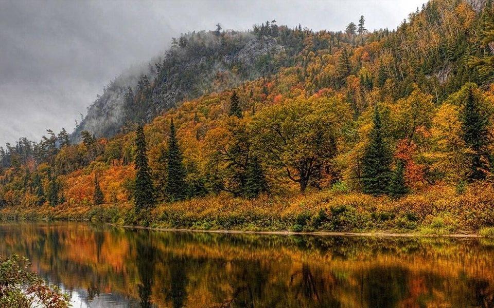 Quebec Releases Information through Arrima