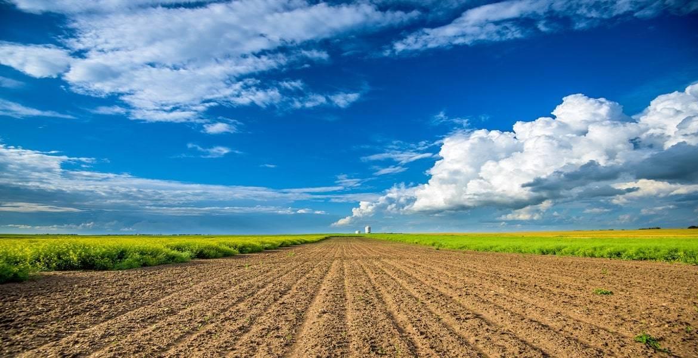 New Agri-Food Pilot Program