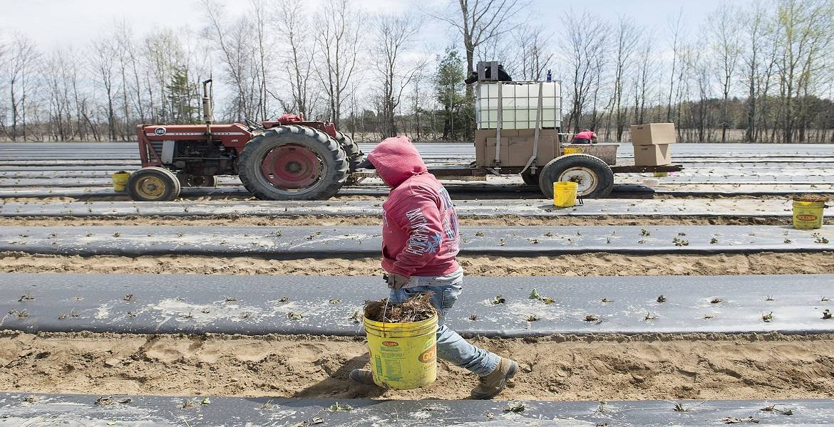 Canada Support for Temporary Foreign Workers