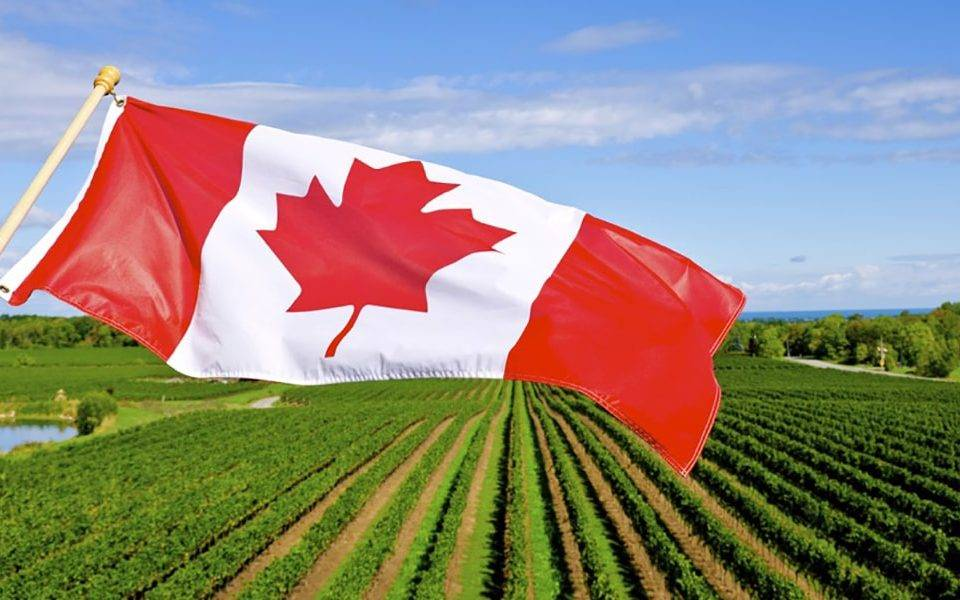 Country Guide Canada's agricultural entrepreneurs